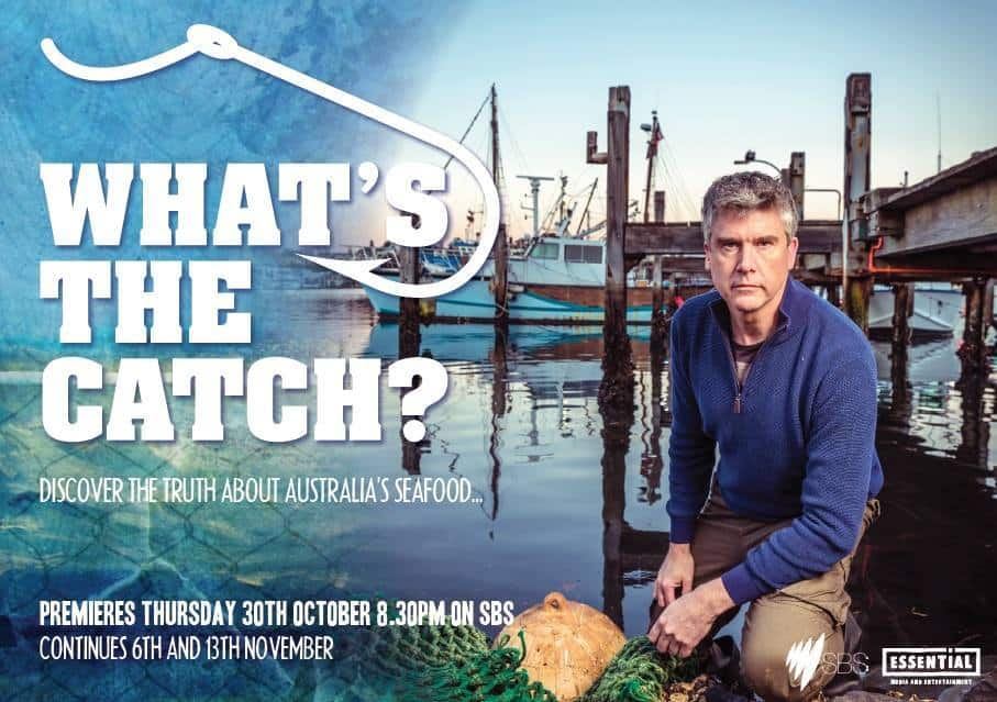 What's the Catch television show.